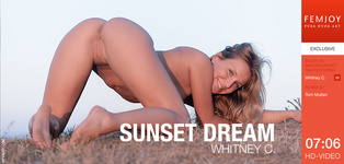 Whitney C. - Sunset Dream
